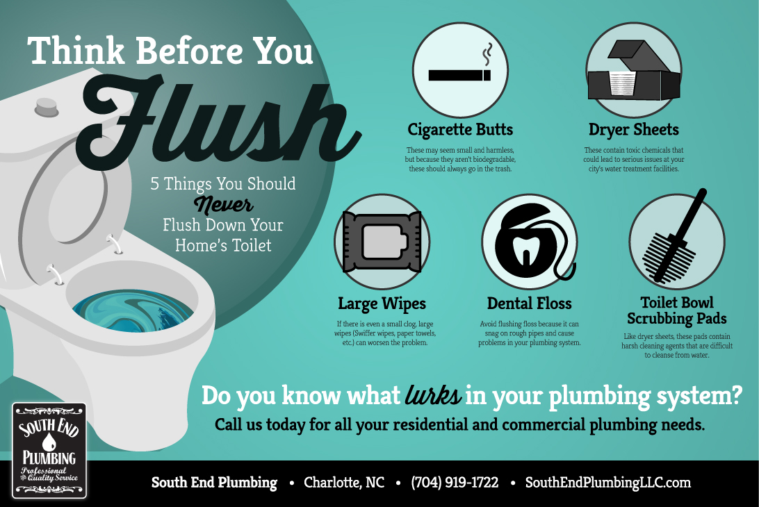 Think Before You Flush Never Flush These 5 Things To